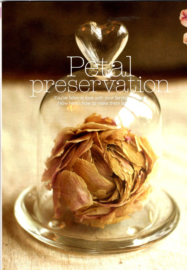wedding-flowers-magazine-preservinf-your-wedding-flowers
