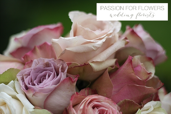 dusky pink vintage roses