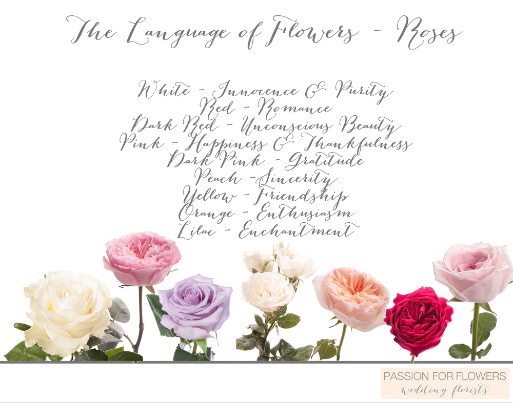 The language of flowers flower meanings passion for flowers buycottarizona