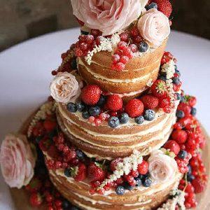 shustoke farm barns wedding flowers passion for flowers naked cake pink roses