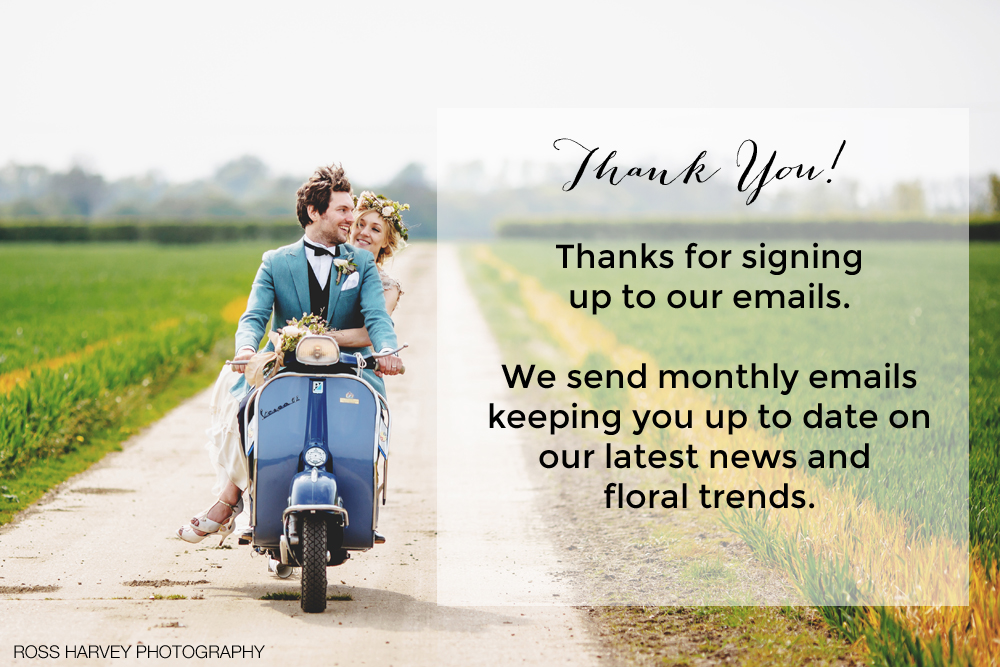 thank you for subscribing to our emails