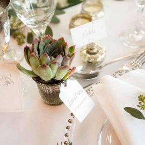 succulent wedding favours silver pots