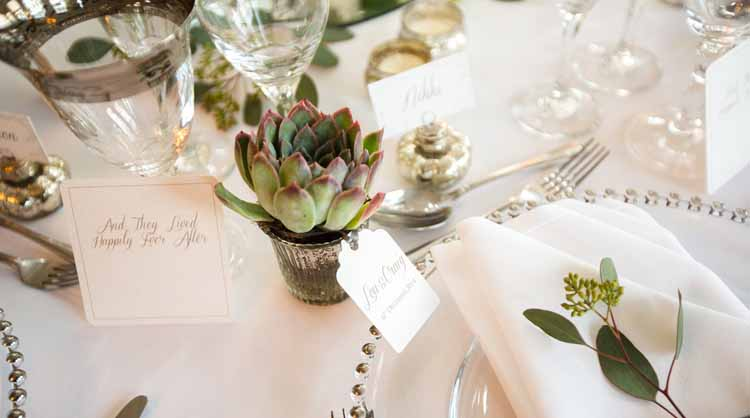 succulent wedding favours silver pots
