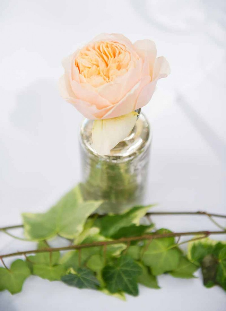 Peach David Austin rose mercury silver vase wedding centrepieces Hampton Manor Wedding Flowers Passion for Flowers