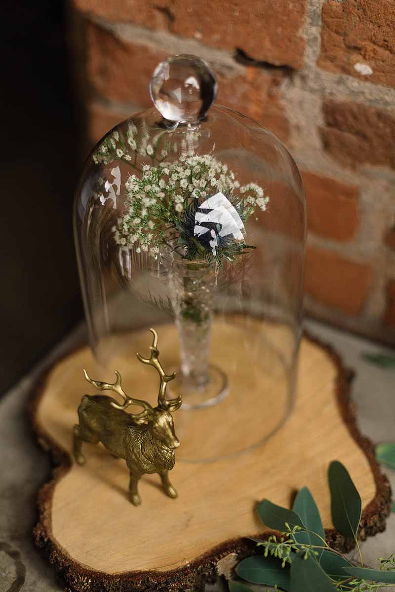rustic luxe wedding styling bell jars on tree slices