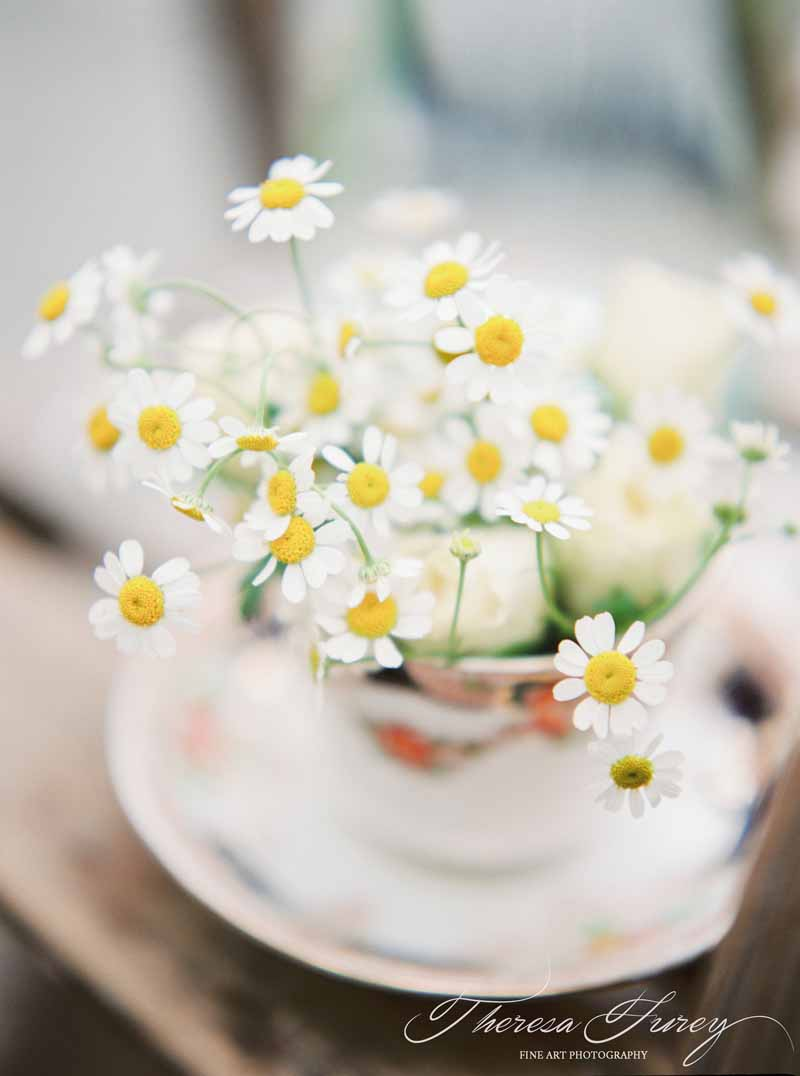 Daisy flowers in vintage tea cups for vintage summer wedding