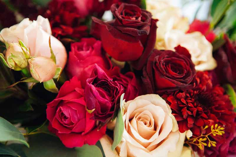 Deep pink red roses wedding