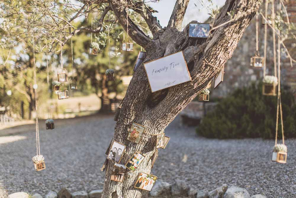Family Tree - Olive tree ideas Destination wedding Locanda In Tuscany