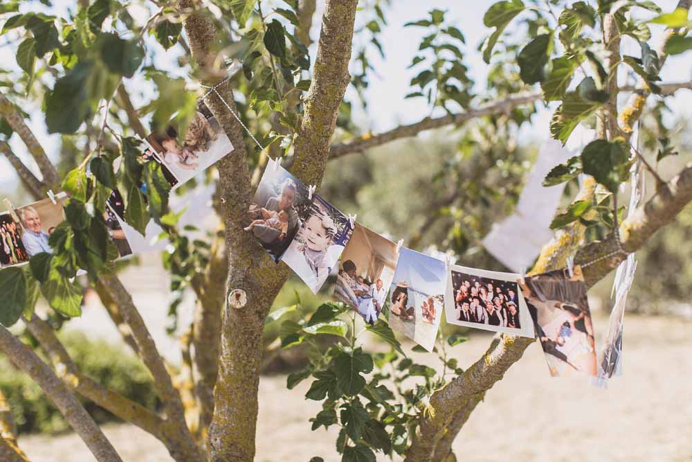 Photo display wedding peg photos from trees